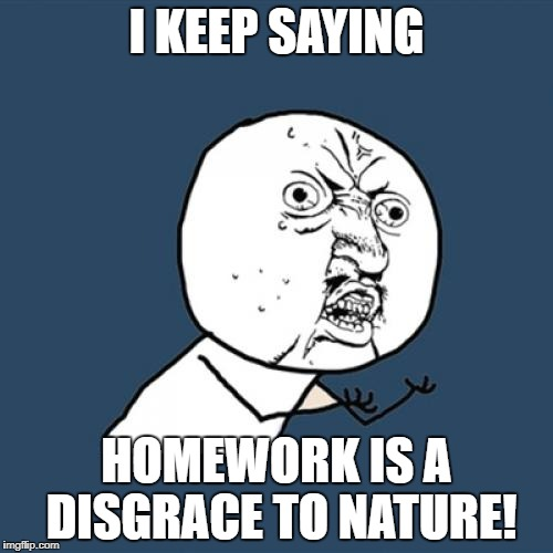 Y U No Meme | I KEEP SAYING HOMEWORK IS A DISGRACE TO NATURE! | image tagged in memes,y u no | made w/ Imgflip meme maker
