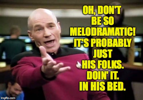 Picard Wtf Meme | OH, DON'T BE SO MELODRAMATIC! IT'S PROBABLY JUST HIS FOLKS. DOIN' IT. IN HIS BED. | image tagged in memes,picard wtf | made w/ Imgflip meme maker