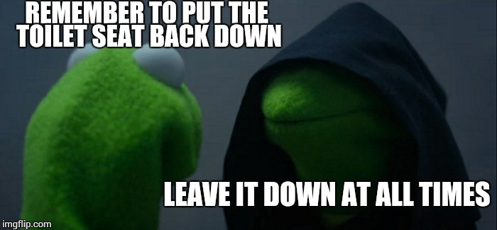 Evil Kermit Meme | REMEMBER TO PUT THE TOILET SEAT BACK DOWN LEAVE IT DOWN AT ALL TIMES | image tagged in memes,evil kermit | made w/ Imgflip meme maker