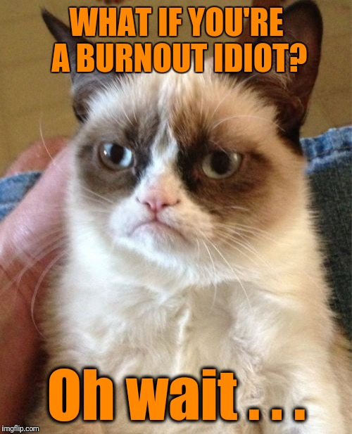 Grumpy Cat Meme | WHAT IF YOU'RE A BURNOUT IDIOT? Oh wait . . . | image tagged in memes,grumpy cat | made w/ Imgflip meme maker