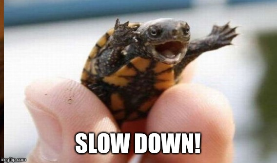 SLOW DOWN! | made w/ Imgflip meme maker