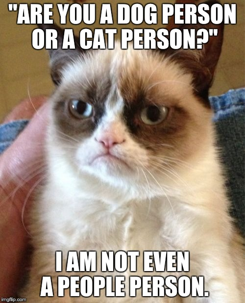 "Grumpy Cat Meme | ""ARE YOU A DOG PERSON OR A CAT PERSON?"" I AM NOT EVEN A PEOPLE PERSON. 