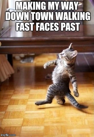 Cool Cat Stroll Meme | MAKING MY WAY DOWN TOWN WALKING FAST FACES PAST | image tagged in memes,cool cat stroll | made w/ Imgflip meme maker