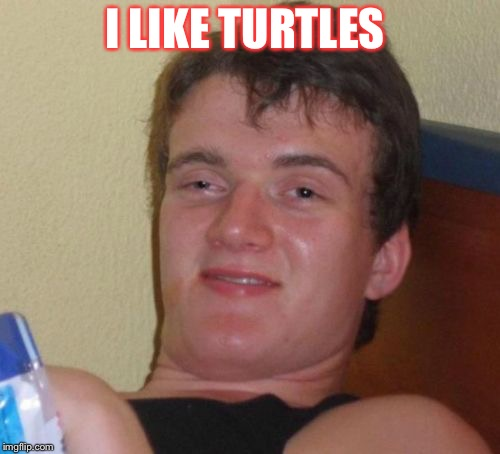 10 Guy Meme | I LIKE TURTLES | image tagged in memes,10 guy | made w/ Imgflip meme maker