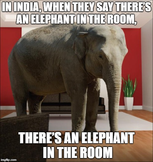 Elephant In The Room | IN INDIA, WHEN THEY SAY THERE'S AN ELEPHANT IN THE ROOM, THERE'S AN ELEPHANT IN THE ROOM | image tagged in elephant in the room,funny,funny memes,memes | made w/ Imgflip meme maker
