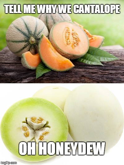 Tell Me Why | TELL ME WHY WE CANTALOPE OH HONEYDEW | image tagged in tell me why,cantalope,honeydew,elope | made w/ Imgflip meme maker