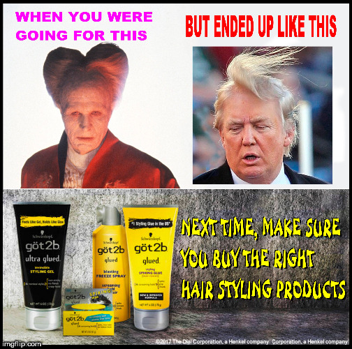 bad hair day | image tagged in bad hair day,dump trump,dracula,donald trumph hair,donald trump the clown,trump hair | made w/ Imgflip meme maker