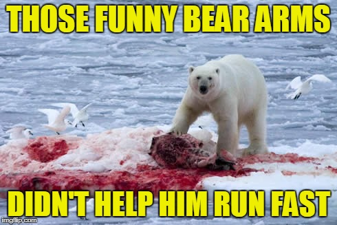 THOSE FUNNY BEAR ARMS DIDN'T HELP HIM RUN FAST | made w/ Imgflip meme maker