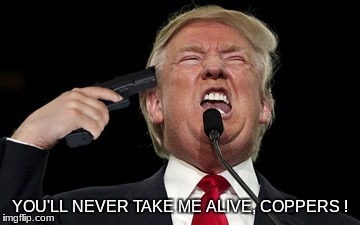 YOU'LL NEVER TAKE ME ALIVE, COPPERS ! | image tagged in donald trump is an idiot | made w/ Imgflip meme maker