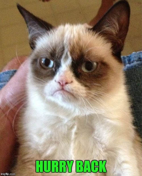 Grumpy Cat Meme | HURRY BACK | image tagged in memes,grumpy cat | made w/ Imgflip meme maker