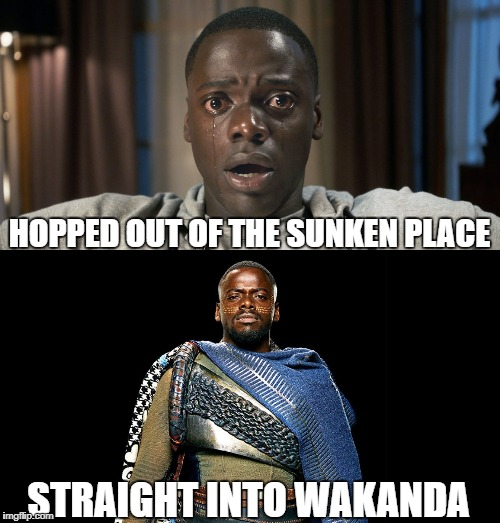 Out of the Sunken Place and Into Wakanda | HOPPED OUT OF THE SUNKEN PLACE STRAIGHT INTO WAKANDA | image tagged in black panther,get out | made w/ Imgflip meme maker