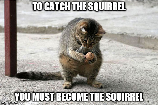 TO CATCH THE SQUIRREL YOU MUST BECOME THE SQUIRREL | made w/ Imgflip meme maker