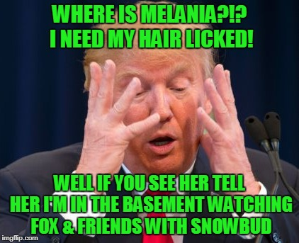 WHERE IS MELANIA?!? I NEED MY HAIR LICKED! WELL IF YOU SEE HER TELL HER I'M IN THE BASEMENT WATCHING FOX & FRIENDS WITH SNOWBUD | made w/ Imgflip meme maker