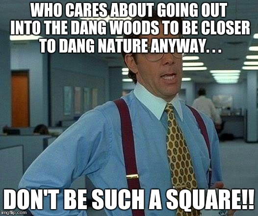 That Would Be Great Meme | WHO CARES ABOUT GOING OUT INTO THE DANG WOODS TO BE CLOSER TO DANG NATURE ANYWAY. . . DON'T BE SUCH A SQUARE!! | image tagged in memes,that would be great | made w/ Imgflip meme maker