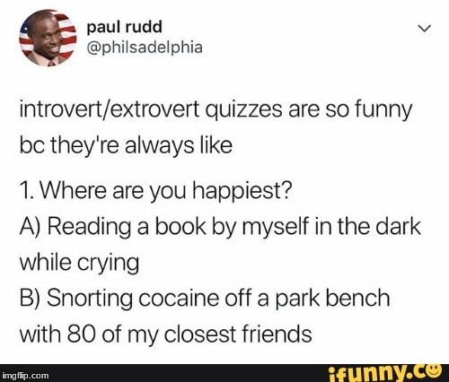introvert vs extrovert | image tagged in funny | made w/ Imgflip meme maker