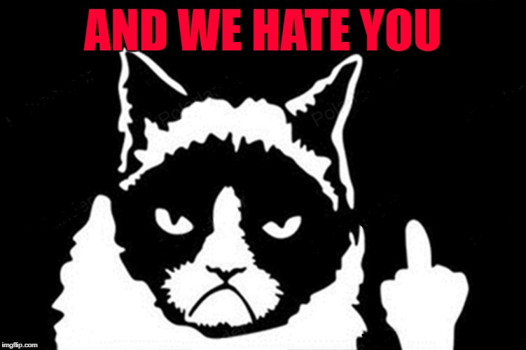 Grumpy Cat Flipping The Bird | AND WE HATE YOU | image tagged in grumpy cat flipping the bird | made w/ Imgflip meme maker