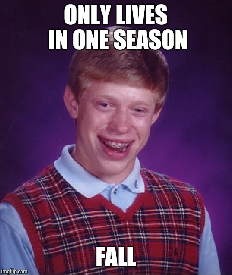 Bad Luck Brian Meme | ONLY LIVES IN ONE SEASON FALL | image tagged in memes,bad luck brian | made w/ Imgflip meme maker