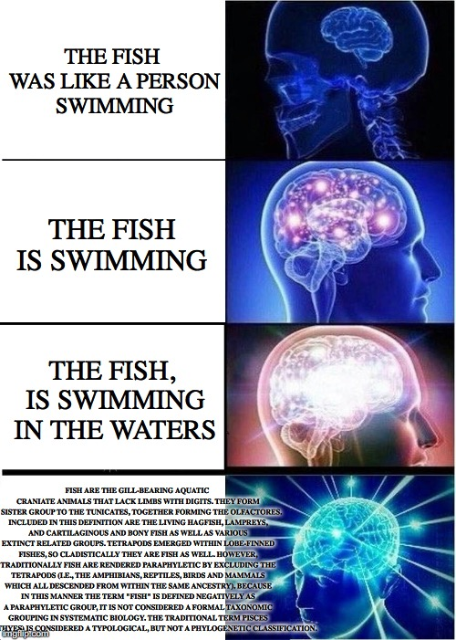 Expanding Brain Meme | THE FISH WAS LIKE A PERSON SWIMMING THE FISH IS SWIMMING THE FISH, IS SWIMMING IN THE WATERS FISH ARE THE GILL-BEARING AQUATIC CRANIATE ANIM | image tagged in memes,expanding brain | made w/ Imgflip meme maker