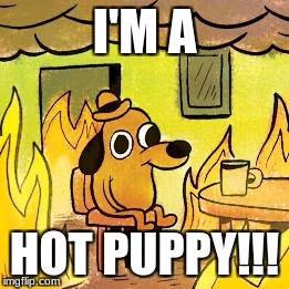 Dog in burning house | I'M A HOT PUPPY!!! | image tagged in dog in burning house | made w/ Imgflip meme maker