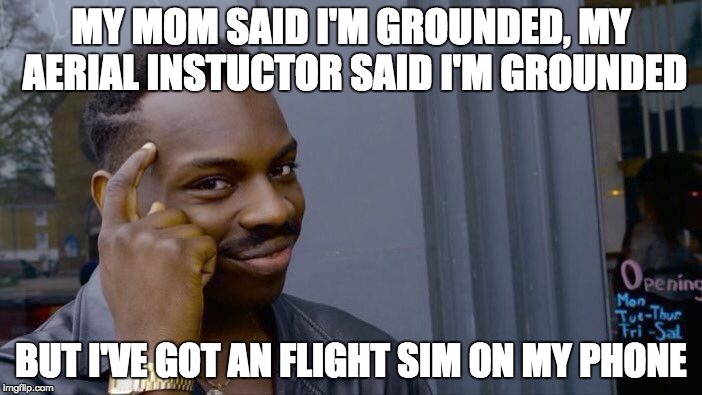 Roll Safe Think About It Meme | MY MOM SAID I'M GROUNDED, MY AERIAL INSTUCTOR SAID I'M GROUNDED BUT I'VE GOT AN FLIGHT SIM ON MY PHONE | image tagged in memes,roll safe think about it | made w/ Imgflip meme maker