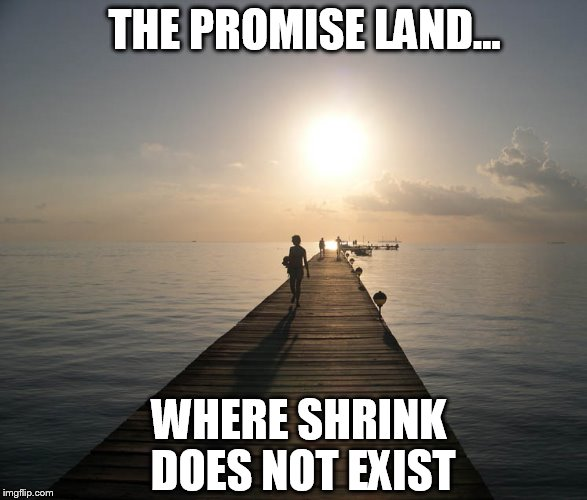 THE PROMISE LAND... WHERE SHRINK DOES NOT EXIST | image tagged in peace | made w/ Imgflip meme maker
