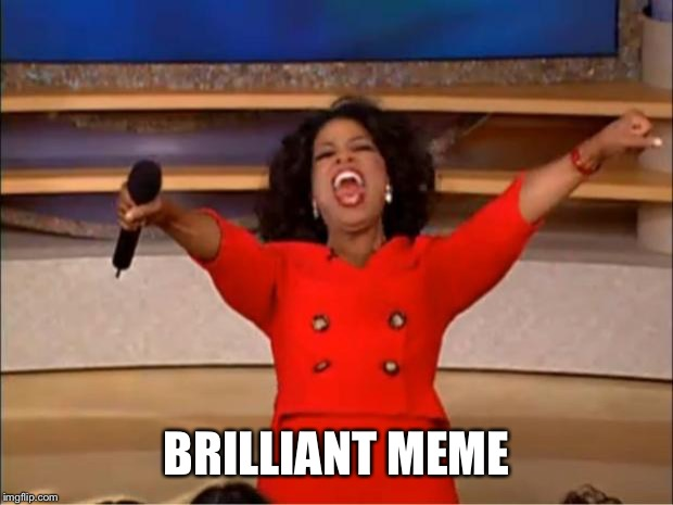 Oprah You Get A Meme | BRILLIANT MEME | image tagged in memes,oprah you get a | made w/ Imgflip meme maker