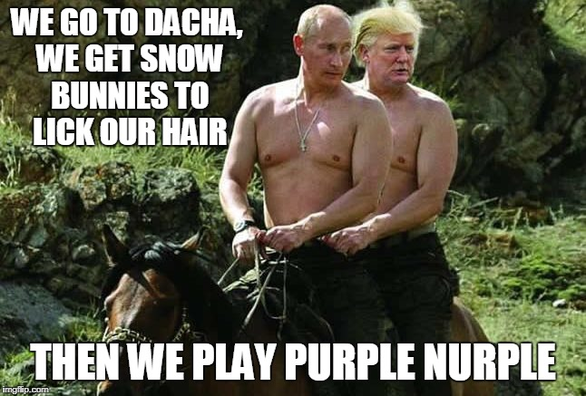 WE GO TO DACHA, WE GET SNOW BUNNIES TO LICK OUR HAIR THEN WE PLAY PURPLE NURPLE | made w/ Imgflip meme maker
