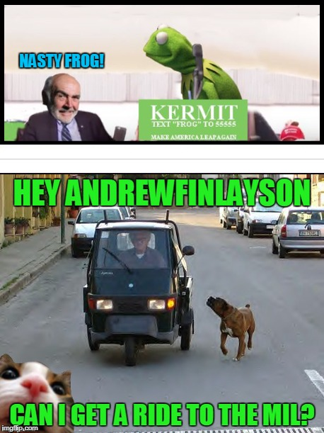 Make America Leap Again! | NASTY FROG! HEY ANDREWFINLAYSON CAN I GET A RIDE TO THE MIL? | image tagged in memes,make american leap again,dog chasing car,hacked meme | made w/ Imgflip meme maker