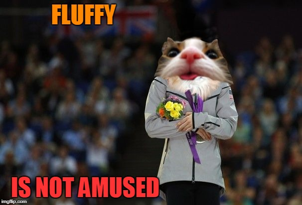 Fluffy in Pyeongchang | FLUFFY IS NOT AMUSED | image tagged in fluffy olympics raycat,memes,pyeongchang | made w/ Imgflip meme maker