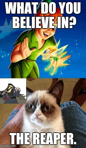Grumpy Cat and the Reaper | WHAT DO YOU BELIEVE IN? THE REAPER. | image tagged in memes,grumpy cat does not believe,grumpy cat | made w/ Imgflip meme maker
