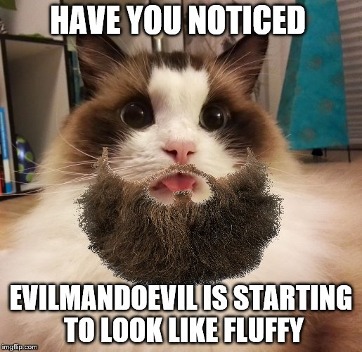HAVE YOU NOTICED EVILMANDOEVIL IS STARTING TO LOOK LIKE FLUFFY | made w/ Imgflip meme maker