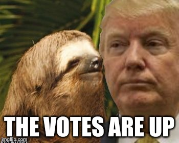 Political advice sloth | THE VOTES ARE UP | image tagged in political advice sloth | made w/ Imgflip meme maker