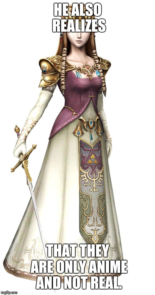 Princess Zelda | HE ALSO REALIZES THAT THEY ARE ONLY ANIME AND NOT REAL. | image tagged in princess zelda | made w/ Imgflip meme maker