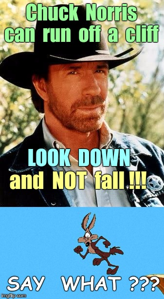 Wile E Coyote and Chuck Norris | Chuck  Norris   can  run  off  a  cliff LOOK  DOWN and  NOT  fall !!! SAY  WHAT ??? | image tagged in memes,chuck norris,wile e coyote,gravity | made w/ Imgflip meme maker