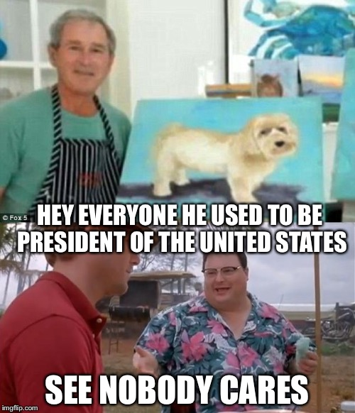 Just When You Were Sick of Political Memes...... | HEY EVERYONE HE USED TO BE PRESIDENT OF THE UNITED STATES SEE NOBODY CARES | image tagged in political meme,memes,george w bush | made w/ Imgflip meme maker