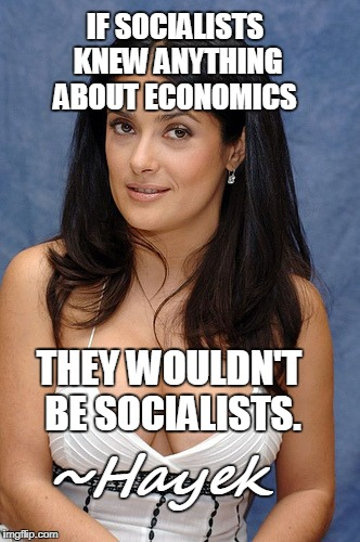 economist and philosopher best known for the defense of classical liberalism | IF SOCIALISTS KNEW ANYTHING ABOUT ECONOMICS ~Hayek THEY WOULDN'T BE SOCIALISTS. | image tagged in selma hayek,economics,socialist,hayek,photo not related,memes | made w/ Imgflip meme maker