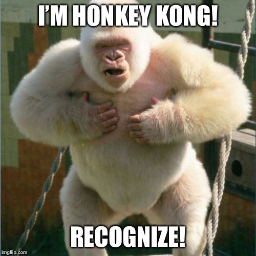 I'M HONKEY KONG! RECOGNIZE! | image tagged in white gorilla,honkey kong | made w/ Imgflip meme maker