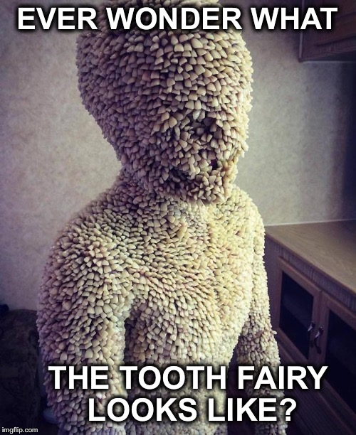 What Does The Tooth Fairy Look Like For Real