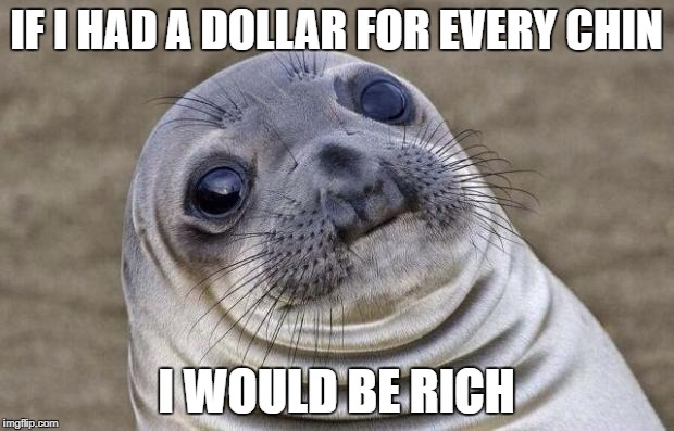 Awkward Moment Sealion | IF I HAD A DOLLAR FOR EVERY CHIN I WOULD BE RICH | image tagged in memes,awkward moment sealion | made w/ Imgflip meme maker