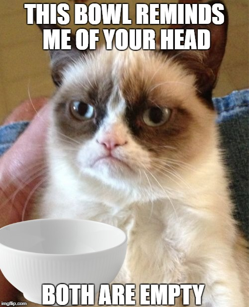Grumpy cat | THIS BOWL REMINDS ME OF YOUR HEAD BOTH ARE EMPTY | image tagged in grumpy cat,bowl | made w/ Imgflip meme maker