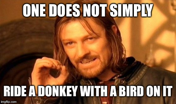One Does Not Simply Meme | ONE DOES NOT SIMPLY RIDE A DONKEY WITH A BIRD ON IT | image tagged in memes,one does not simply | made w/ Imgflip meme maker