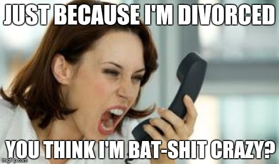 JUST BECAUSE I'M DIVORCED YOU THINK I'M BAT-SHIT CRAZY? | made w/ Imgflip meme maker