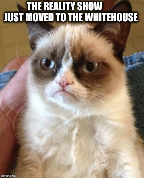 Grumpy Cat Meme | THE REALITY SHOW         JUST MOVED TO THE WHITEHOUSE | image tagged in memes,grumpy cat | made w/ Imgflip meme maker