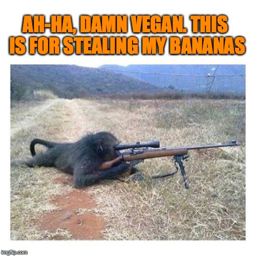 Maintaining Food Security | AH-HA, DAMN VEGAN. THIS IS FOR STEALING MY BANANAS | image tagged in monkey,banana,vegan,sniper | made w/ Imgflip meme maker