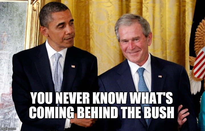 YOU NEVER KNOW WHAT'S COMING BEHIND THE BUSH | made w/ Imgflip meme maker