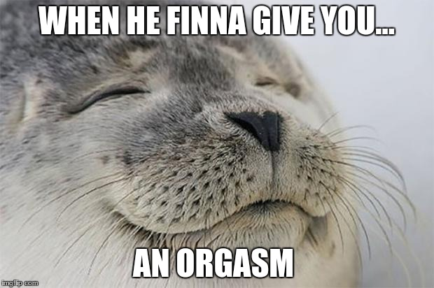 Satisfied Seal Meme | WHEN HE FINNA GIVE YOU... AN ORGASM | image tagged in memes,satisfied seal | made w/ Imgflip meme maker