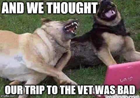 AND WE THOUGHT OUR TRIP TO THE VET WAS BAD | made w/ Imgflip meme maker
