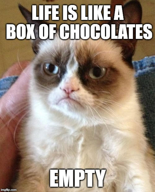 Grumpy Cat |  LIFE IS LIKE A BOX OF CHOCOLATES; EMPTY | image tagged in memes,grumpy cat,forrest gump,forrest gump box of chocolates,philosophy,proverb | made w/ Imgflip meme maker