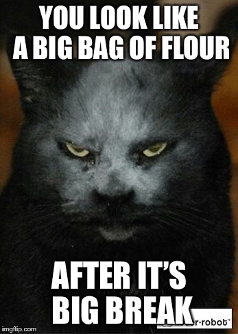 Flour Demon | YOU LOOK LIKE A BIG BAG OF FLOUR AFTER IT'S BIG BREAK | image tagged in flour demon,memes,flour | made w/ Imgflip meme maker