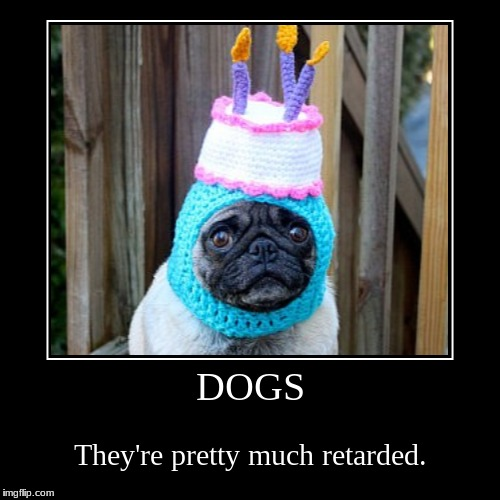 Dogs | DOGS | They're pretty much retarded. | image tagged in funny,demotivationals,silly,retarded dog | made w/ Imgflip demotivational maker